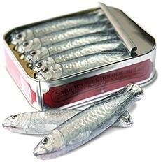 chocolate_sardines